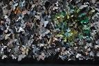'Dark Green Fritillary 01' Argynnis aglaja aglaia