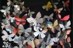 'Butterfly Box 14'